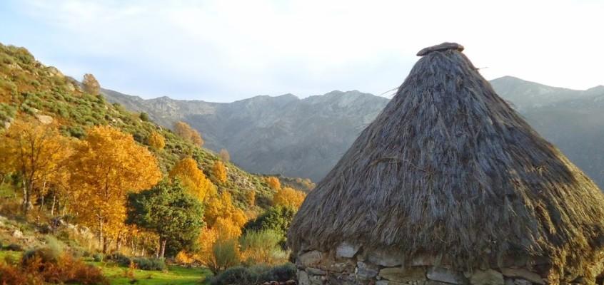 De Candeleda a Guisando. Entre otoñadas y rocas. 21-22 de Noviembre de 2014.